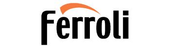 Газовые котлы марки Ferroli